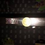 SHADYXV Vinyl by Eminem.PRO Eminem Shady Records. Photo by Igor Basenko